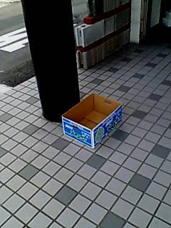 image/ho-no-o-2006-06-28T20:56:15-1.jpg